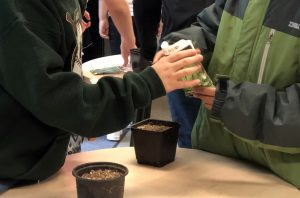 students prepare to plant seeds
