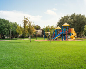 Grassy field with a play structure